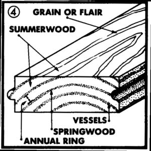 Hardwood Floor Grain Denver